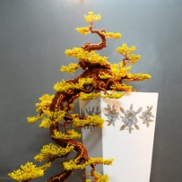 Kengai_bonsai-9